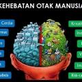 Otak Mamalia vs Otak Modern